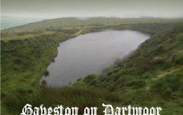 Gaveston2